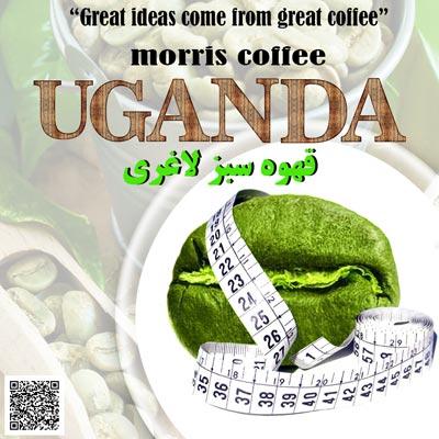 قهوه سبز لاغری اوگاندا