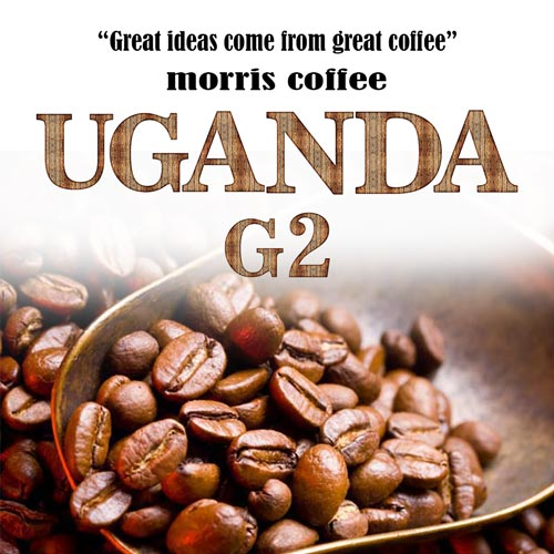 قهوه اوگاندا G2