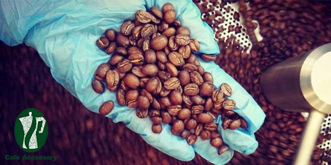 قهوه در مبدأ